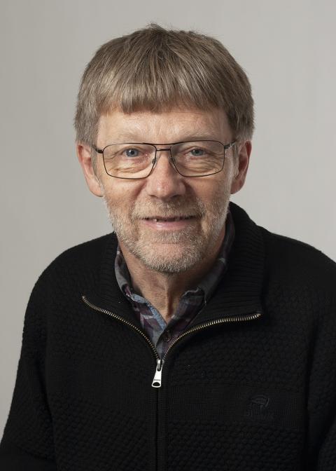 Niels NørgaardSandal