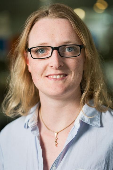 Lise Tordrup